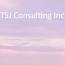 TSJ Consulting Inc. Logo