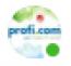 profi.com Logo