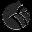 Raccoopack Media Logo