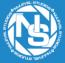 NuLevel Studios Logo