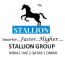 Stallion Systems and Solutions Pvt Ltd Logo