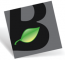 Brightleaf Consulting Group LLC Logo