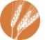 PrairieView Partners Logo