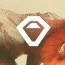 Acorn Studio logo