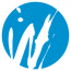 Wellcare Marketing & Communication Logo