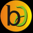 Bikash Digitech Logo
