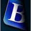 Balgores Property Group logo