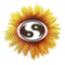 Subtle Network Design & Marketing Logo