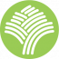 BoTree logo