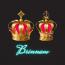 Brinnam - Rai's E-Bizz Pvt. Ltd. Logo