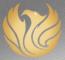 Phoenix Financial Group Ltd Logo