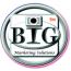 Big Marketing Solutions, LLC Logo
