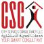 City Services Consultancy Logo