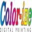 Color-ize Logo