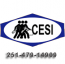 Complete Employment Services Inc Logo