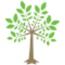 Create and Prosper Financial Services Ltd logo