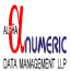 Alphanumeric Data Management Logo