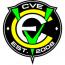 Central Valley Environmental Logo