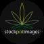 StockPot Images, LLC Logo