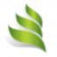 Dynamic Management Solutions Logo