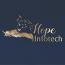 MRR Hope Infotech Pvt Ltd Logo