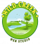 Wild Creek Web Studio Logo