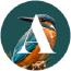 Avelan Digital Agency Logo