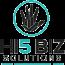 Hi5 Biz Solutions Logo
