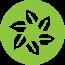 GreenHouse Agency - Digital Marketing Agency