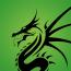 Green Dragon Technology Logo