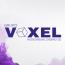 VOXEL Group logo