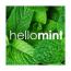 hellomint Ltd Logo