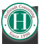 Hollstadt Consulting logo