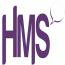 Hughes Marketing Solutions logo
