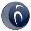 I.B.I.S. Logo