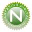 Nessware.Net Logo