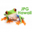 JPG Hawaii Logo