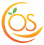 OrangeSkill Technologies Logo