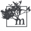 Mangrove Web Development Logo