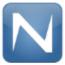 Netzon logo