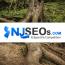 NJSEOs Website Design, SEO & PPC Agency Logo