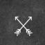 Petrocci Design Logo