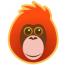 Pongos Interactive logo