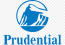 Prudential Life Insurance & Financial Services Logo