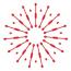 Redkiwi Logo