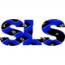 Shapiro, Steven L, CPA Logo