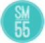Social Media 55 Logo