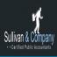 Sullivan and Company Logo