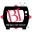 The Broadcast Image Group Logo