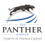 The Panther Group Logo